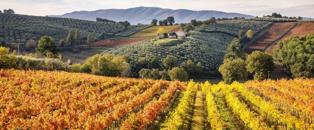 umbria-Travelling in Umbria